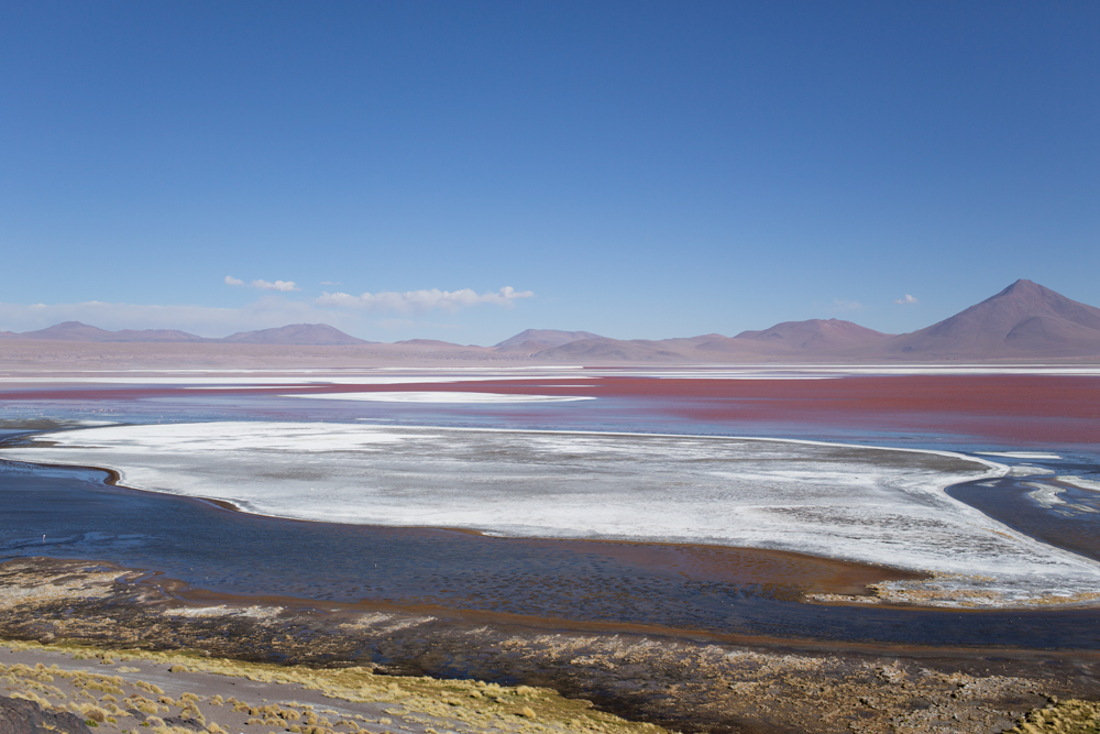 Laguna Colorada in the Central Ande. The white deposits is formed by salt and borax minerals